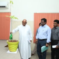The Symbolism of Watering of a Tree Sapling